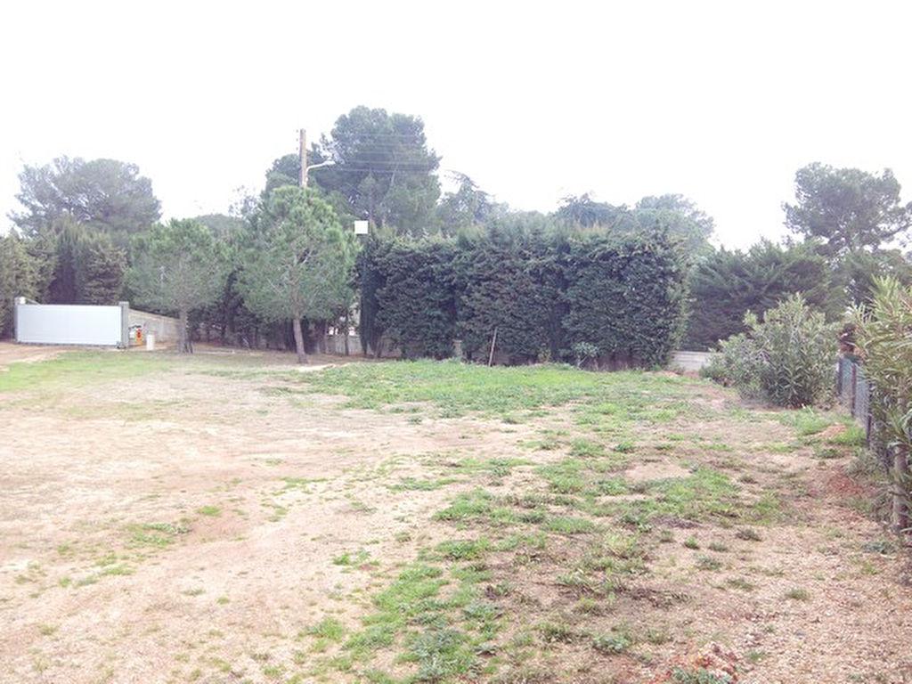 Terrain constructible Marseillan 1000 m2 Clos Au calme et plat permis ok