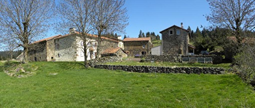 Haute-Loire , hameau de 7 bâtisses sur 13 ha de terrain