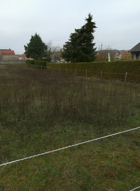 Terrain de 2700 m² constructible 21330  Cerilly cote d'or