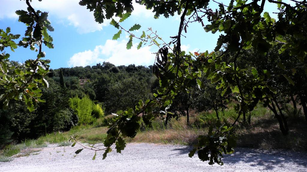 Terrain constructible à 10 km de Saint-Tropez