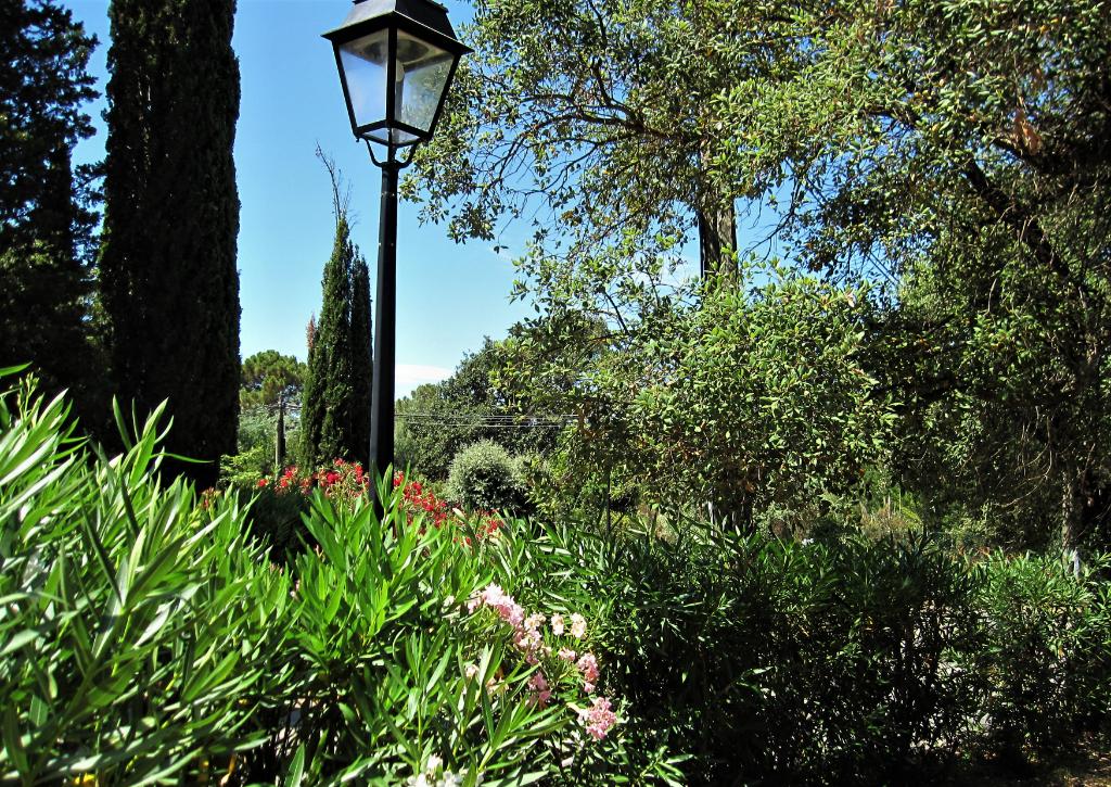 Villa avec piscine au milieu de la végétation provençale