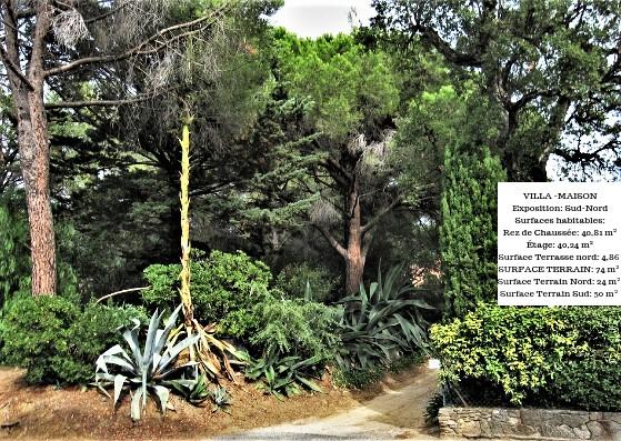 Villa-Maison avec jardin privatif