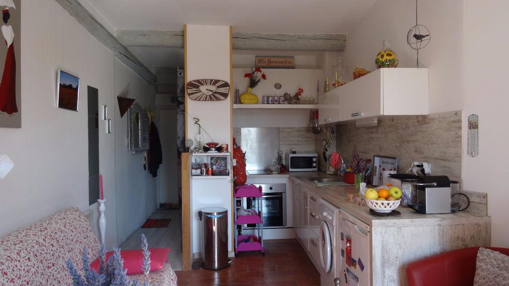 Appartement L Isle Sur La Sorgue 1 pièce(s)