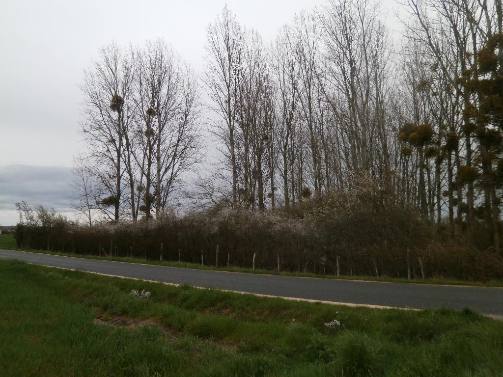 TERRAIN DE LOISIRS 2370 M2 TOUS USAGES LIBRE