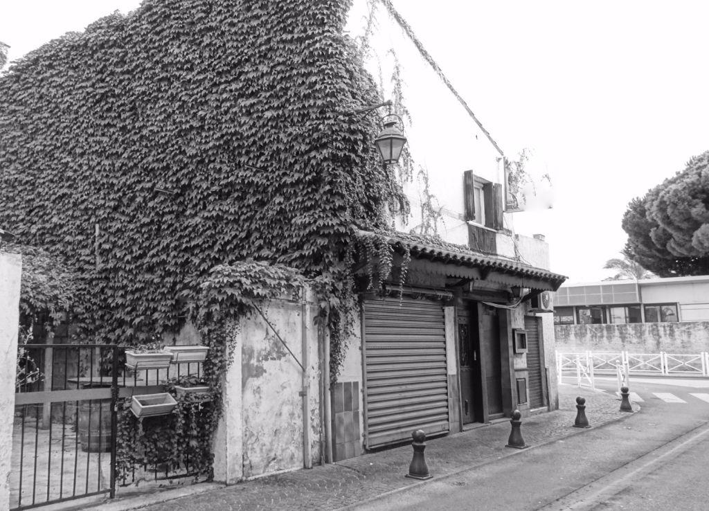 Mur et Fond Restaurant au Grau du roi