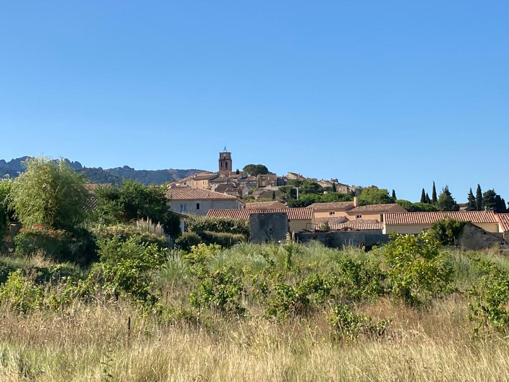 Magnifique Terrain plat 2000m2 constructible et viabilisé à Sablet et jolie vue du village et des Dentelles de Montmirail 0668368774