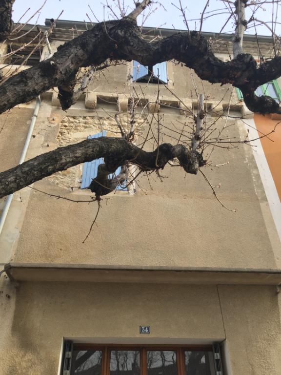 Au centre de Tulette, maison de village en pierre de 100m2 à rénover sur 2 niveaux avec 1 dépendance Annie 0668368774