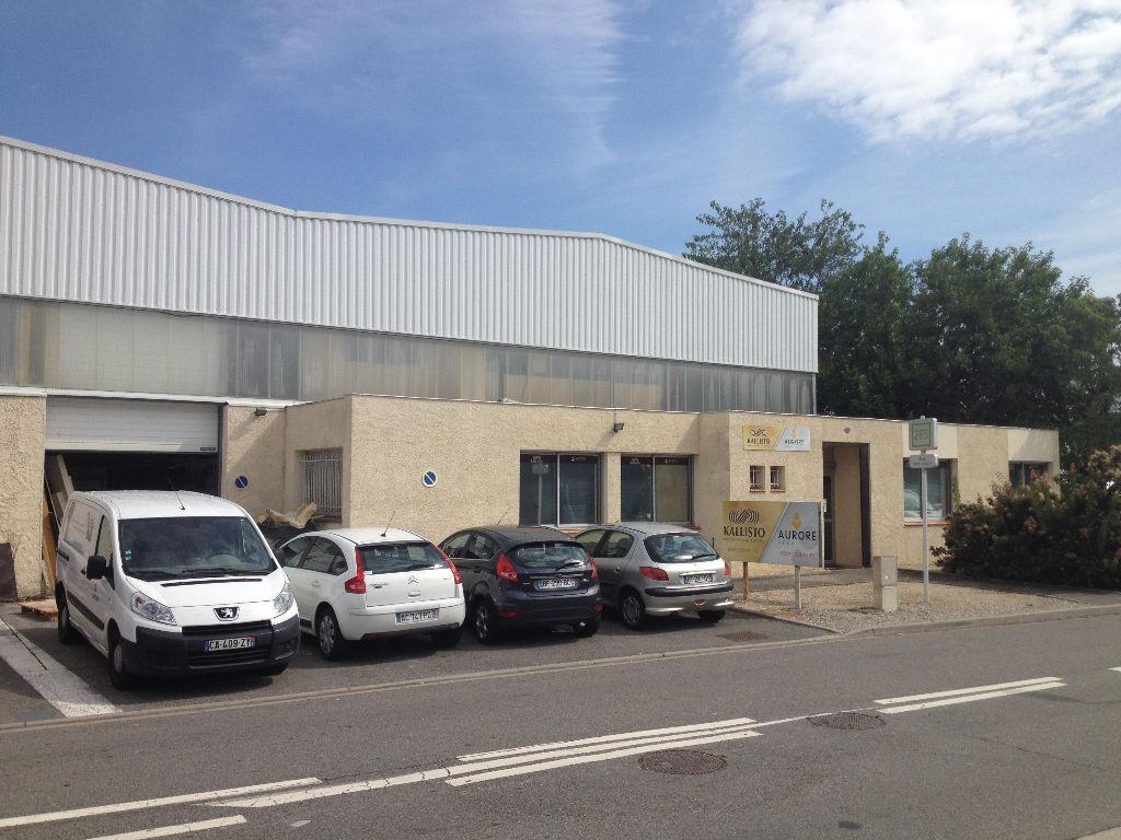 Local d'activité Portet Sur Garonne ZI CHAPITRE