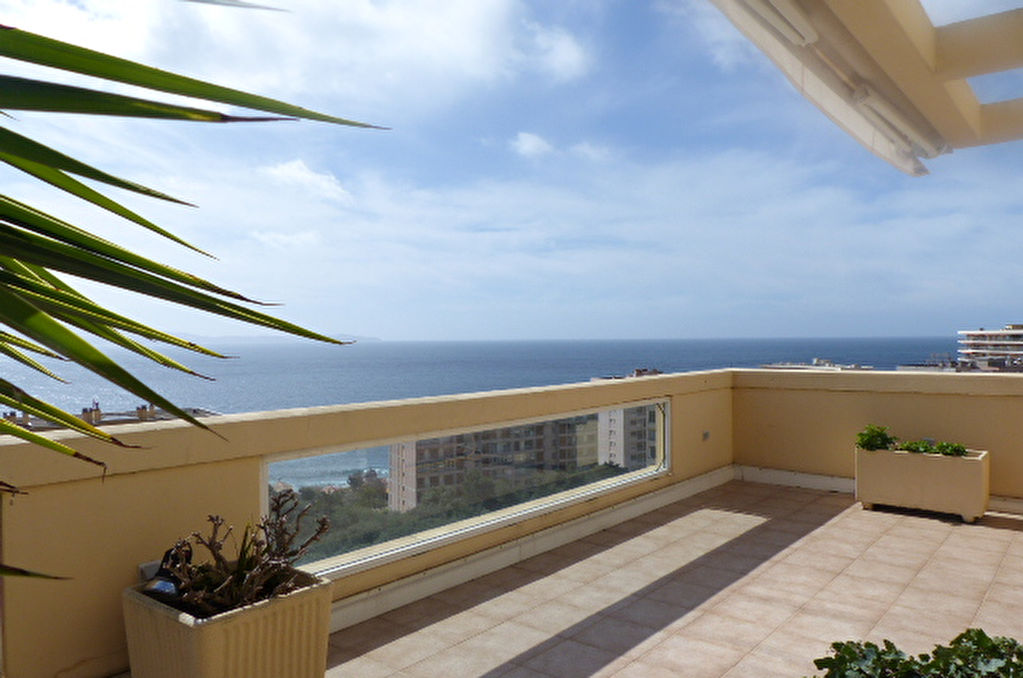 Ajaccio Sanguinaires  magnifique toît terrasse 160m²  type F4 avec double gararage