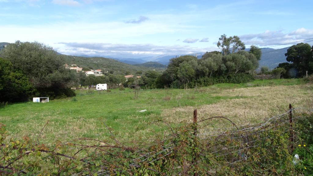 Terrain Serra Di Ferro 2000 m2