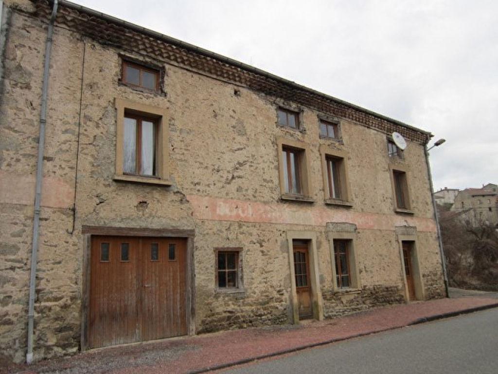 Saint Just En Chevalet  Maison en pierre et terrain