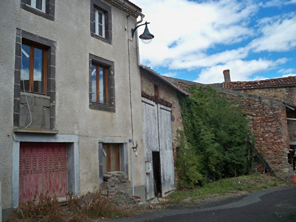 Riom 20mn maison pierre et sa grange