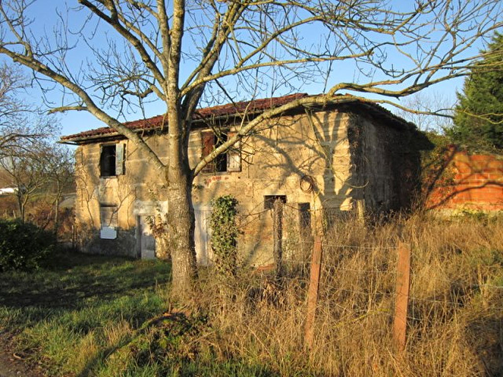 Saint Germain Laval  ferme à rénover sur 15000m² de terrain