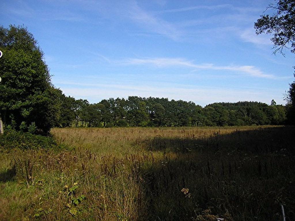 10 hectares de prairies et de bois