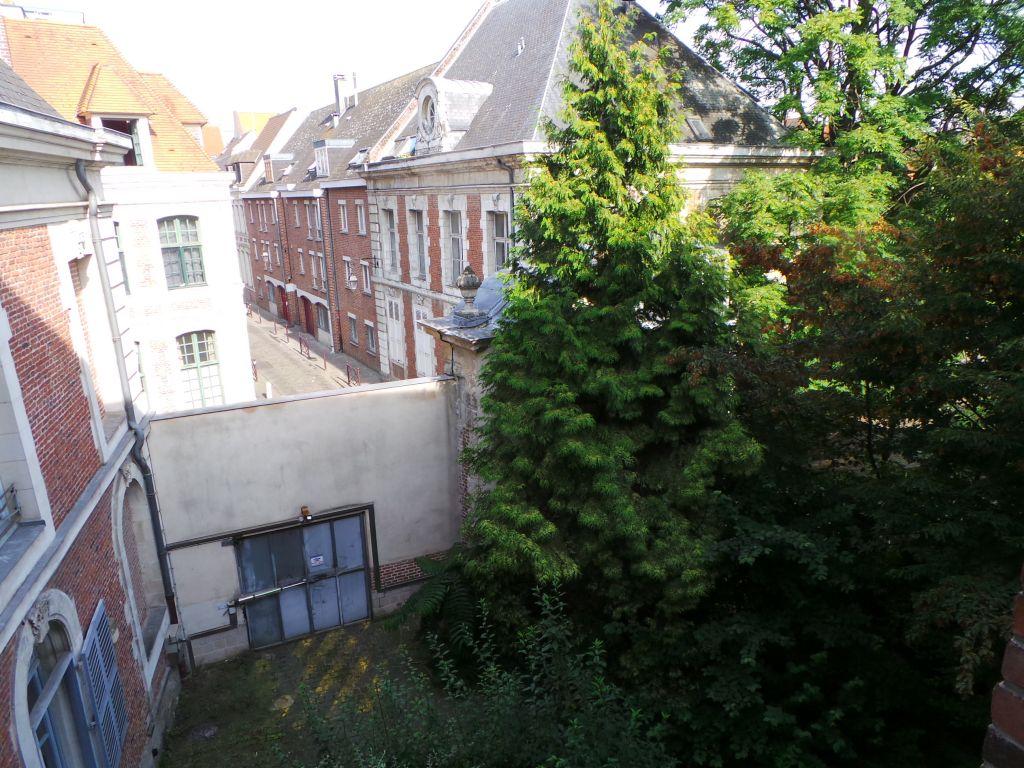 Au coeur du vieux Lille, NTD de laTreille - T1