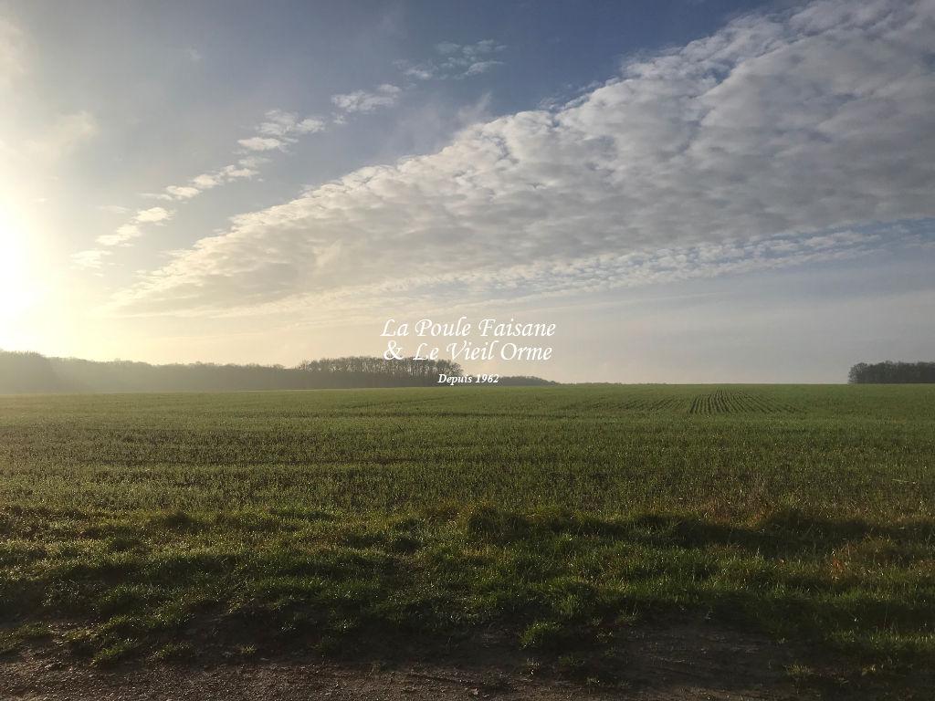 A vendre terrain Poigny la foret