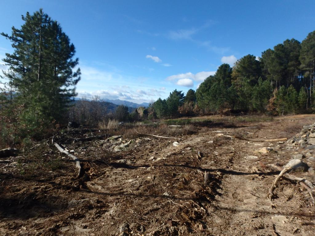Terrain de Loisirs - forage - vue magnifique - ruine d'une auberge