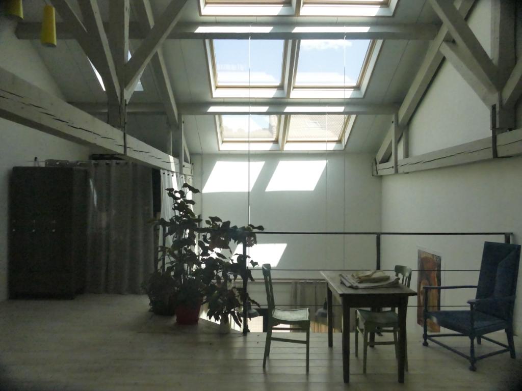 2 Duplex de plain pied  -  2 habitations ou ateliers - espace extérieur - 2 garages
