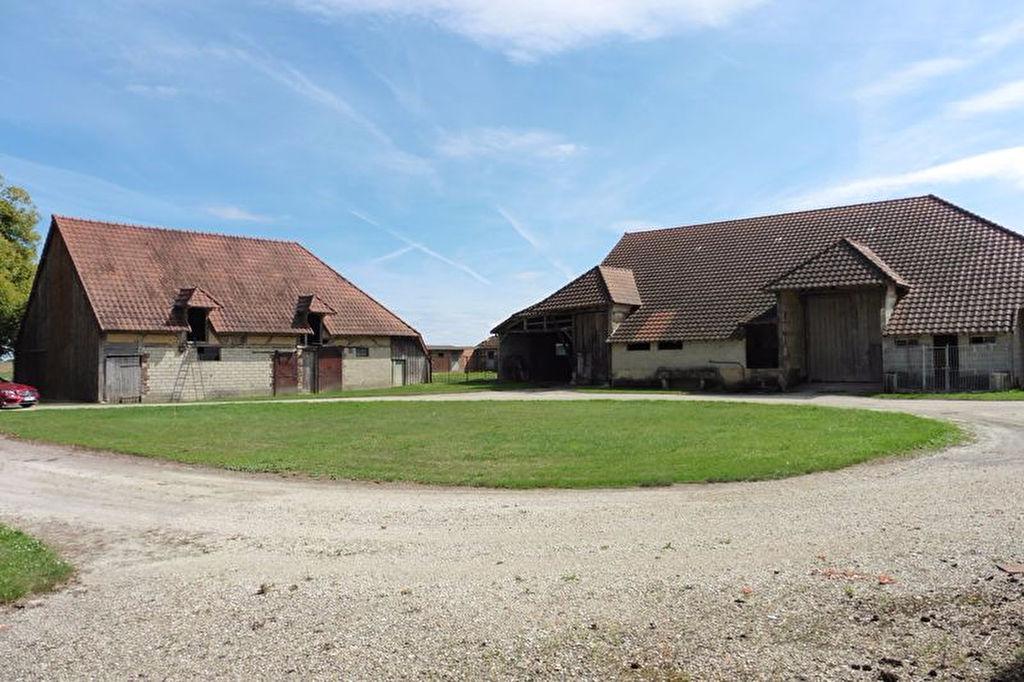St Pouange bâtiments à réhabiliter de 209m² et 500m² sur 1800m² de terrain.