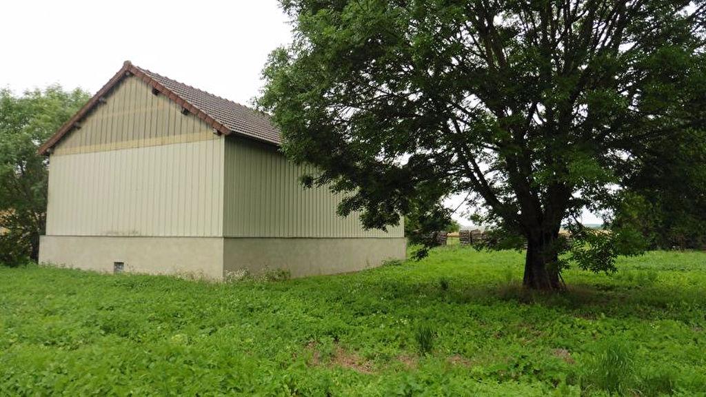 10 430 Agglomération Sud Troyes bâtiment à réhabiliter de 119 m² sur 2600m² de terrain à bâtir