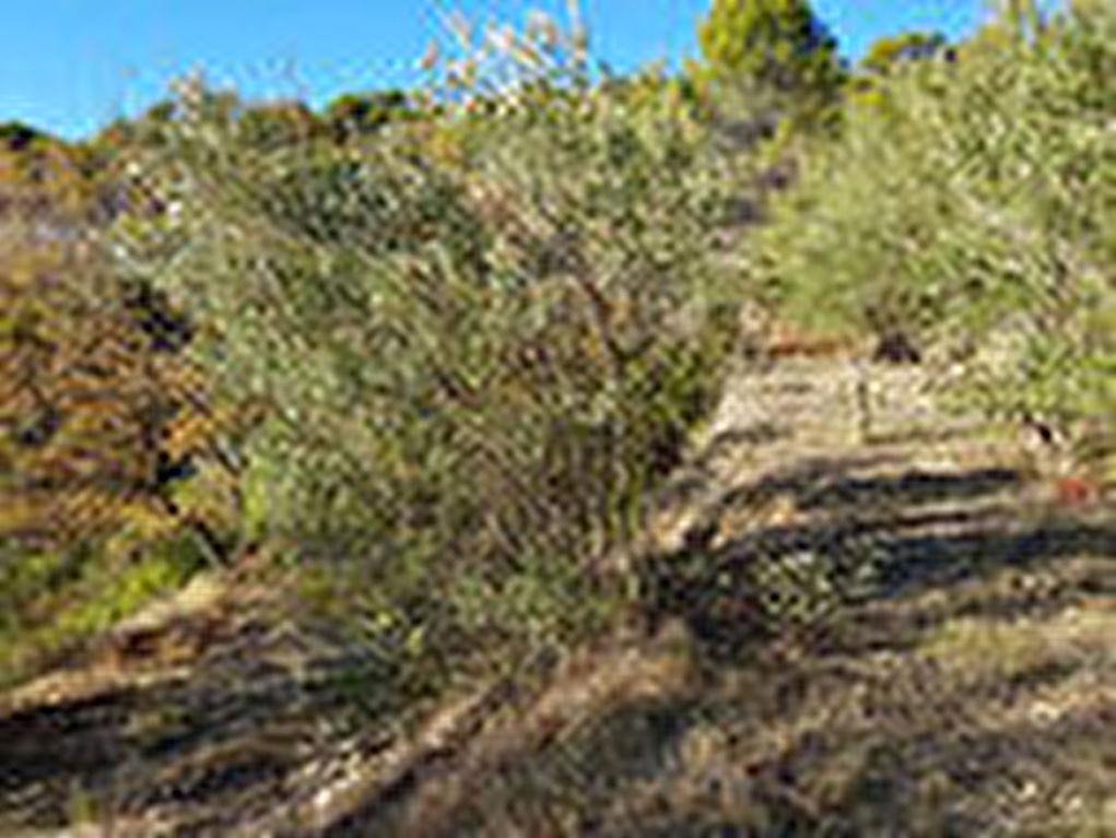 Exclusivité Draguignan  quartier résidentiel et rechercheé terrain de 4700m avec vue dégagée sans vis à vis calme en zone Nb possibilité construire 200m viabilité à proximité  145000€ commission vendeur crn1861