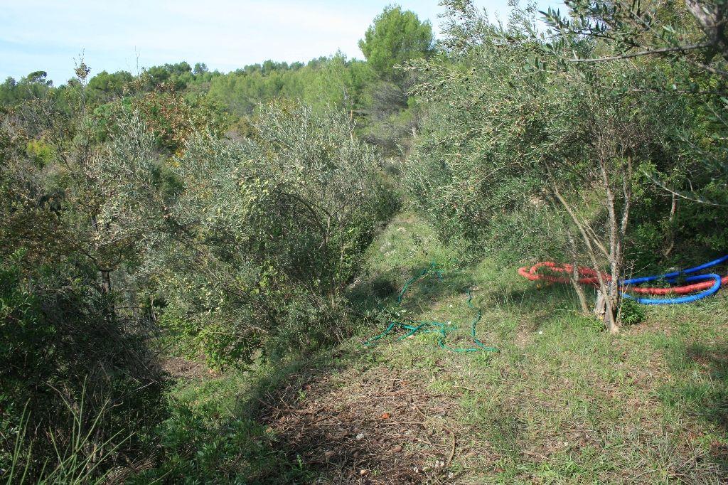 Draguignan quartier recherché et calme Terrain 4600 m avec permis pour une villa F5 de 135m² 145800€ crn2009 commission vendeur