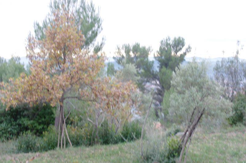 photo de Draguignan  terrain 1569m tout à l'égout viabilisés 198000Euro