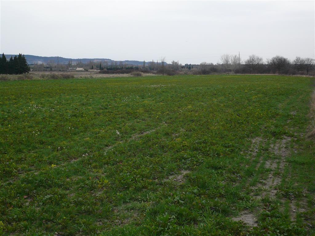 Terre agricole nue de 1,10 ha