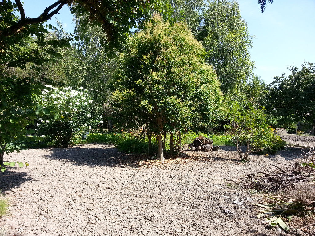 Terrain à Bâtir 980 m² - COS : 0,40