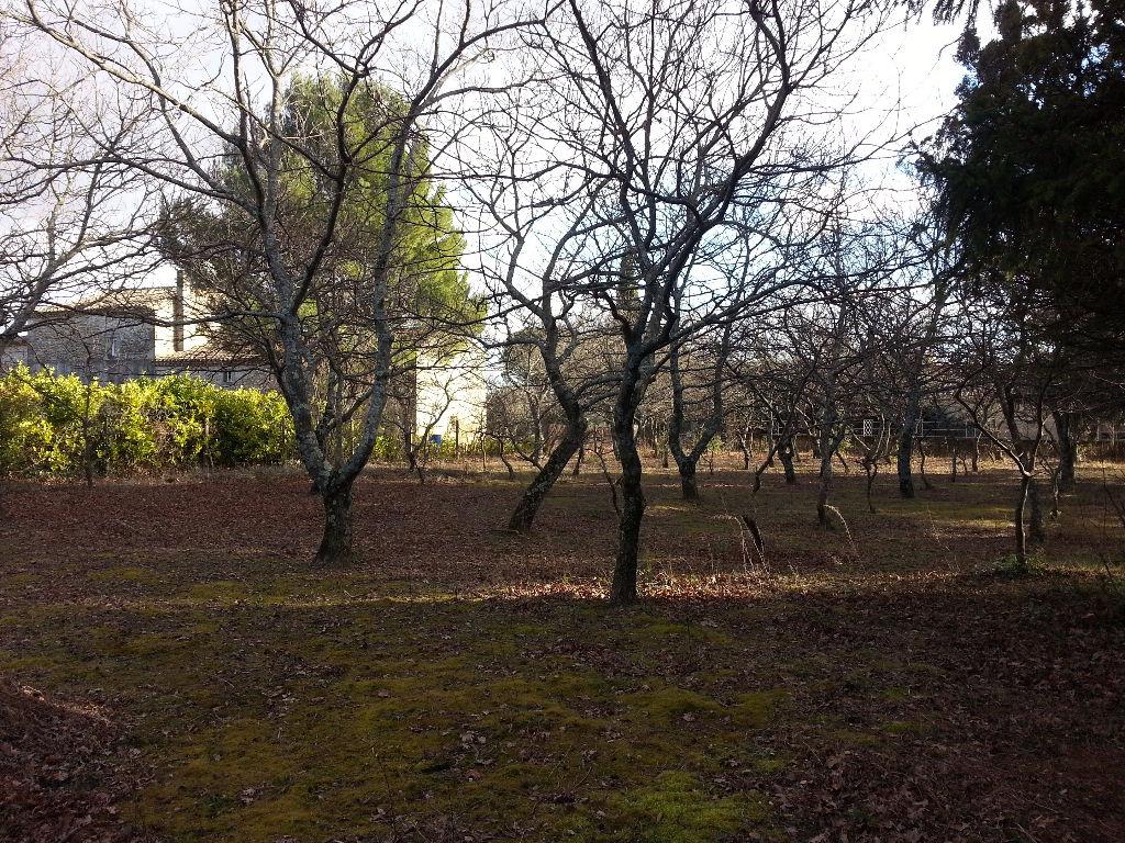 Au coeur de la Drôme provençale, terrain à bâtir 1200 m²