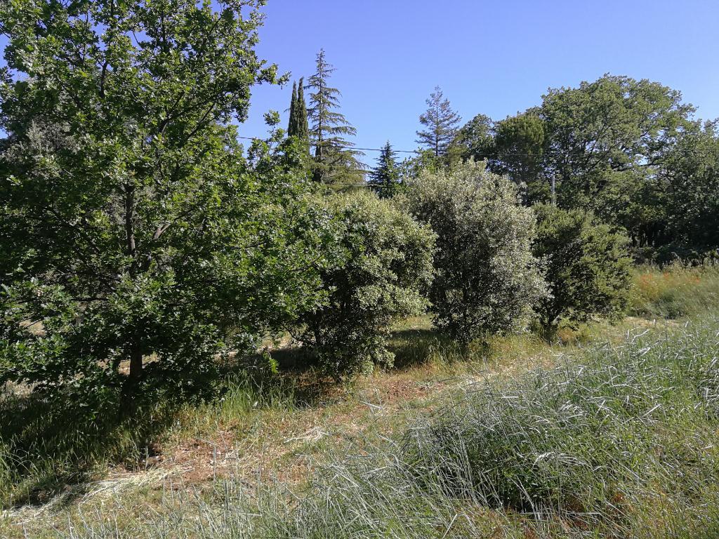 GRIGNAN -Terrain à bâtir 450 m² environ