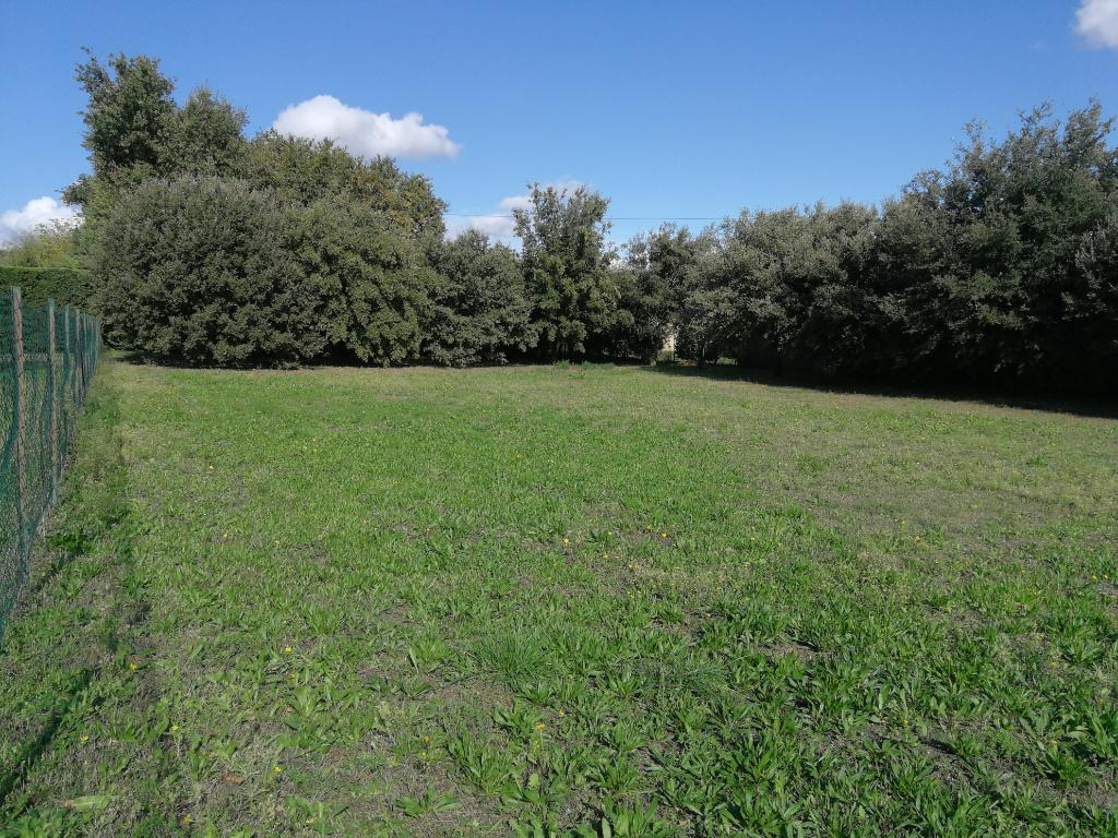 Très beau terrain à bâtir 1195 m² environ.