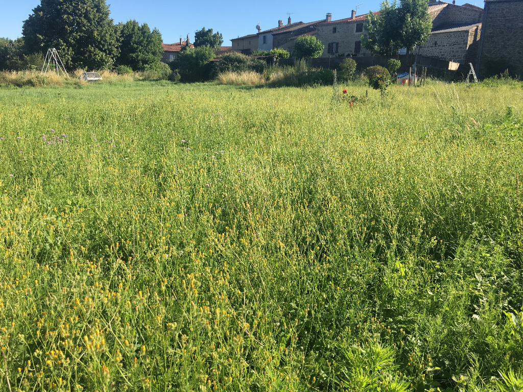 Magnifique terrain plat viabilisé en bordure de 980 m2 à Saint-Jeurre d'Ay