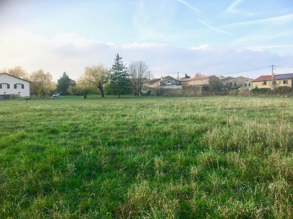 Magnifique terrain plat constructible de 1709 m2, viabilités en bordure, à Quintenas à 10 minutes d'Annonay