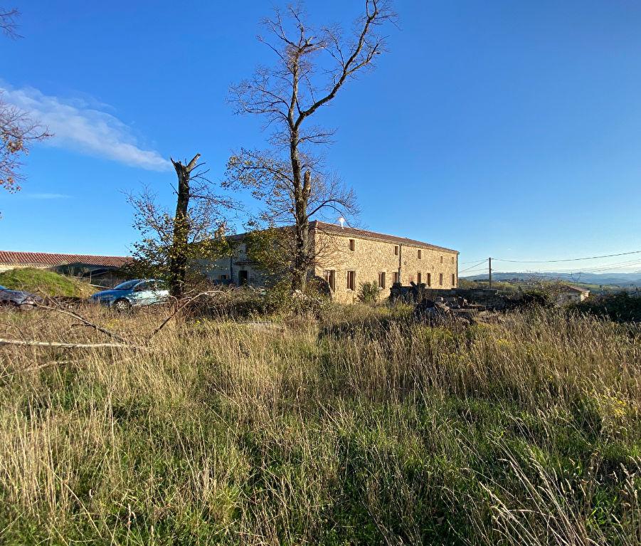 Exceptionnel, magnifique maison mitoyenne en pierre de 300 m2 avec un terrain de 1400 m2 à 10 minutes de Tournon-sur-Rhône