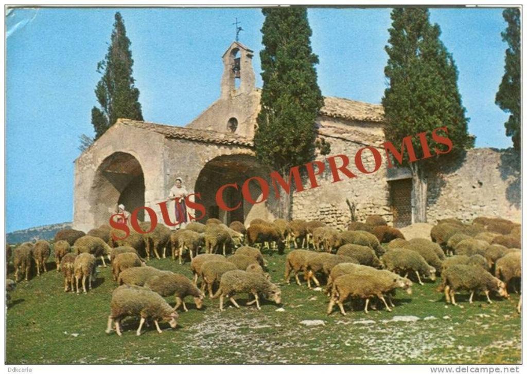 PROVENCE PROPRIETE AGRICOLE 9 HA 850 M2 Bâti Villa T6   Ref TAFFURO 1802