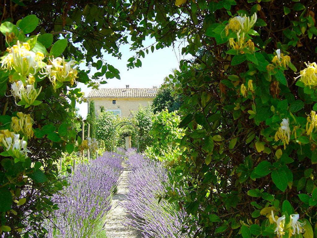 D co au petit jardin uzes argenteuil 32 au bureau merignac au nom de la rose rouen au nom - Petit jardin daylilies argenteuil ...