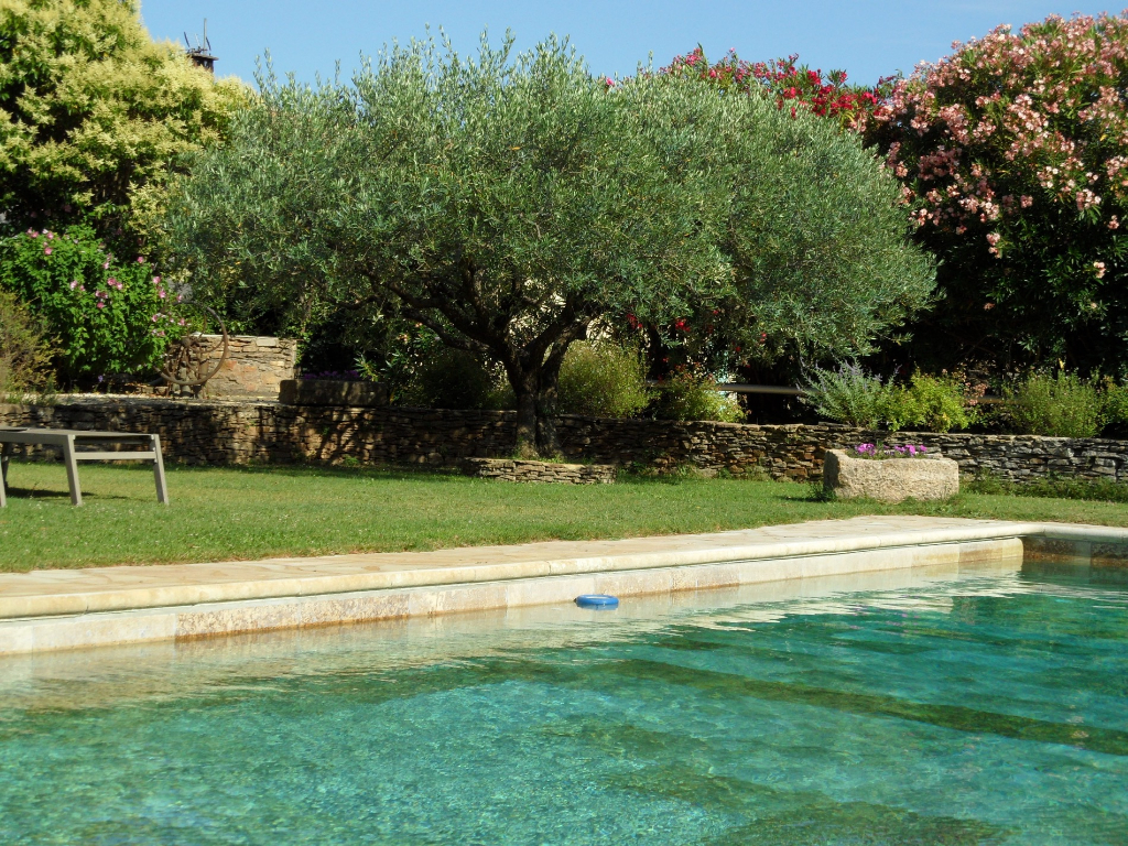 Uzes - Avignon, magnificent Mas with independent apartments, swimming pool