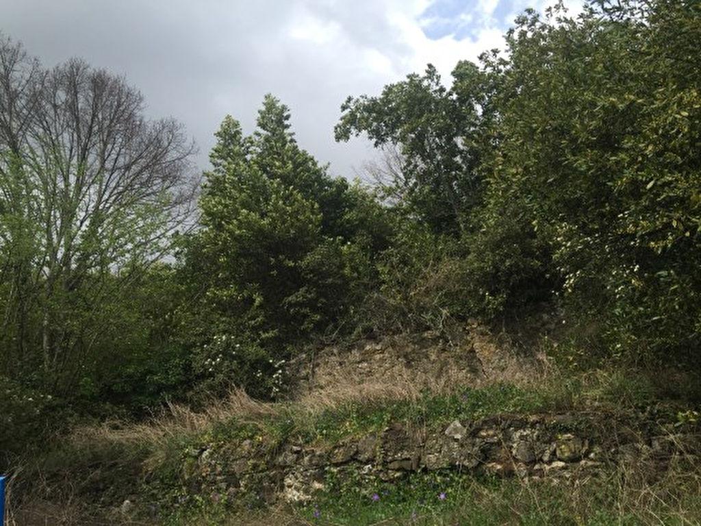 Grand terrain en partie constructible