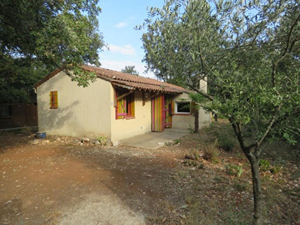 Maison de 39m² avec chalet indépendant de 17m²
