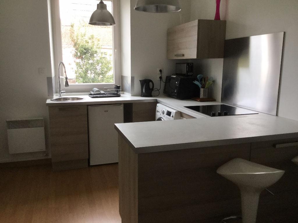 Appartement T1 bis en duplex île de Nantes