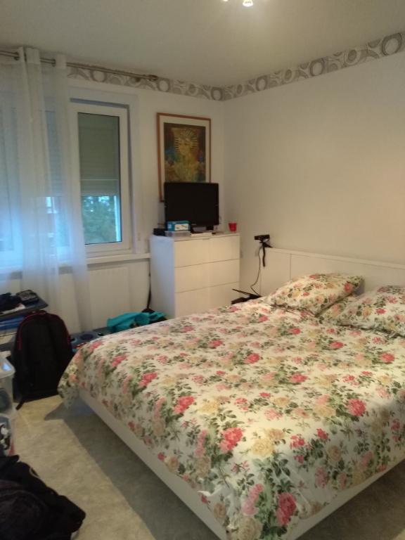 Maison Roubaix prox DAMMARTIN 3 chambre jardin garage