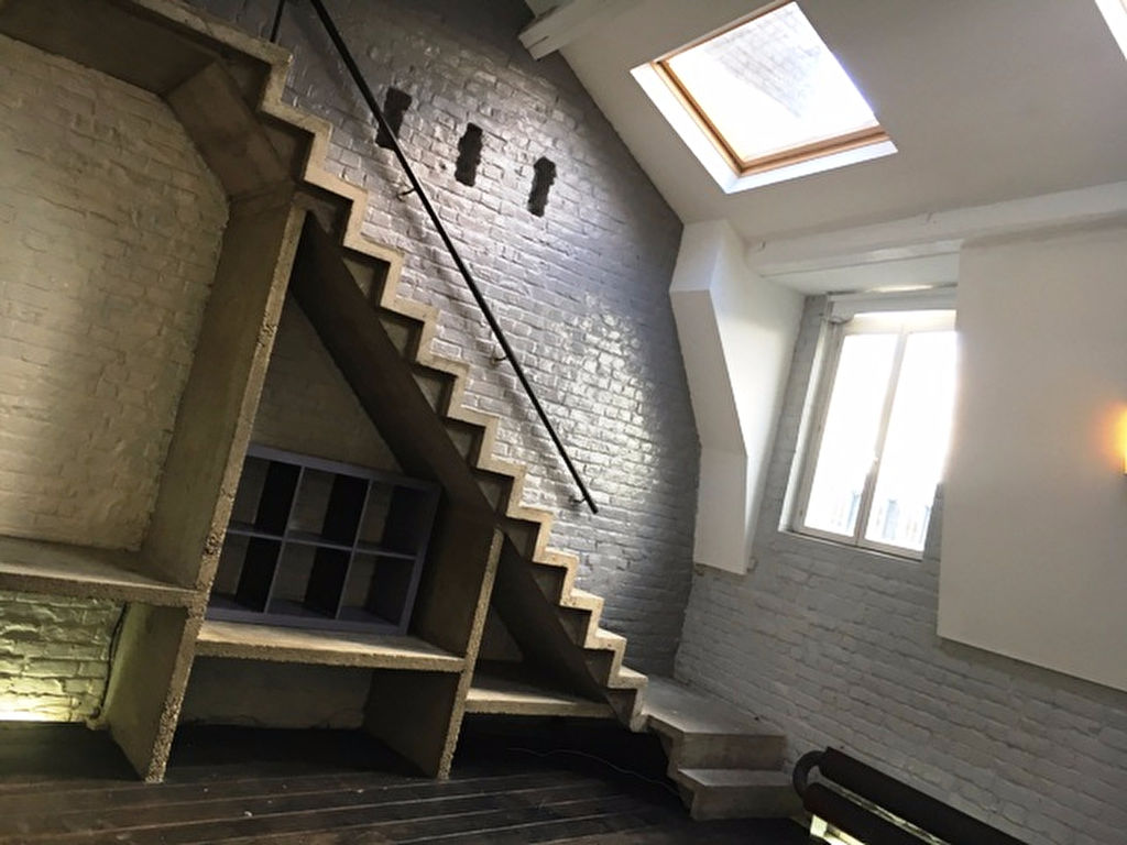 """Appartement-Loft """" Under the roofs"""""""