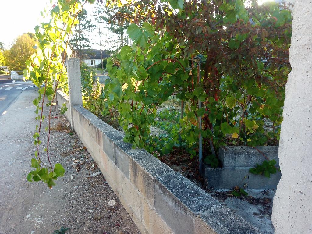 Maison d'investissement 528 m2 + terrain constructible à Chateauneuf Sur Loire