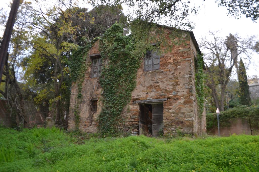 Terrain avec Ruine en pierre