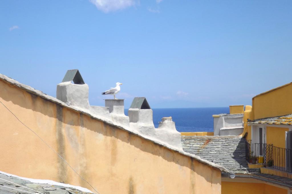 Appartement Bastia, quartier vieux port, vue mer