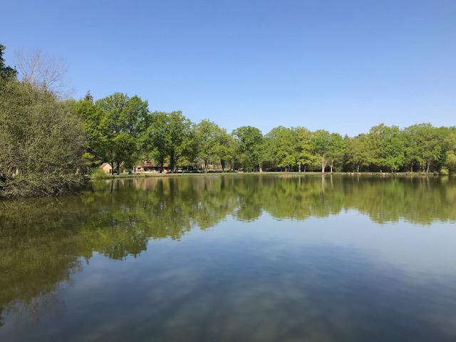 Au sud Orléans ,Activité,  gite , chambres d'hôtes sur un parc de 11HA avec un étang