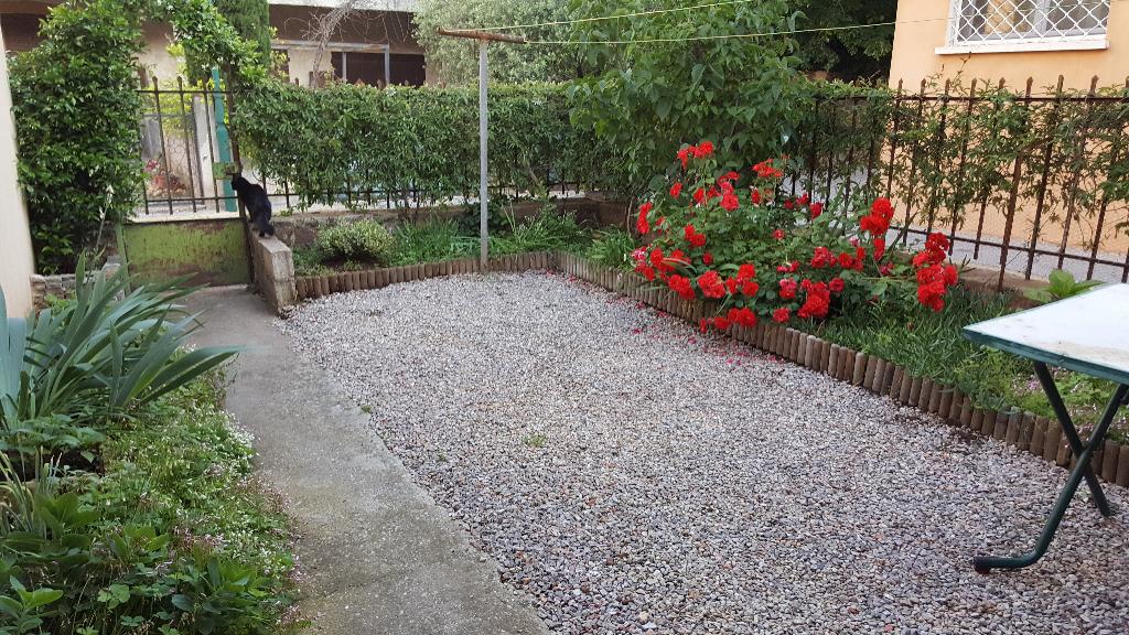 Maison + jardin Le Cannet Des Maures 103 m2