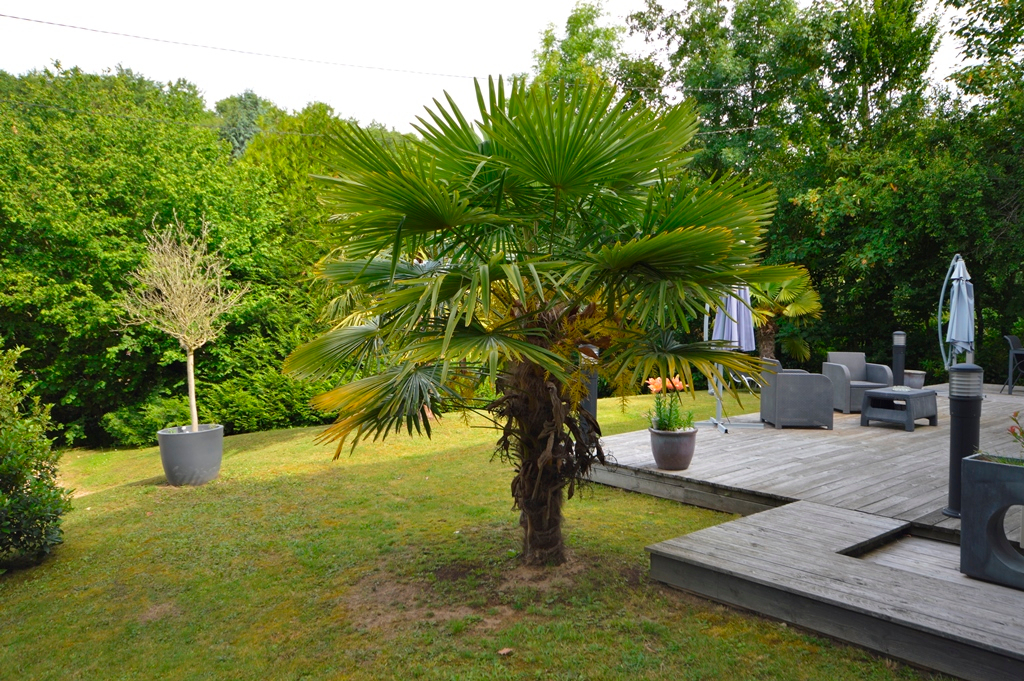 BIEVRES - Maison contemporaine (2 logements indépendants)