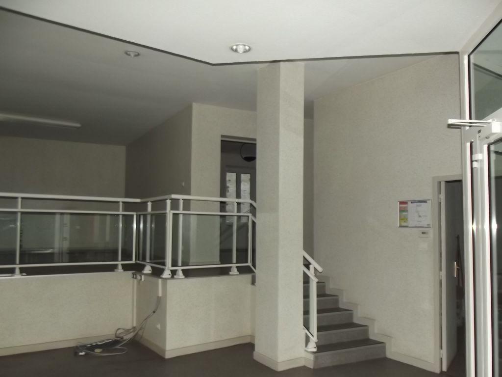 BADONVILLER  LOFT immeuble  garage et cour